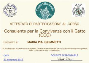 attestato_consulente_giommetti