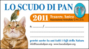 Tessera Amico 2011