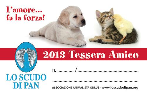 Tessera Amico 2013