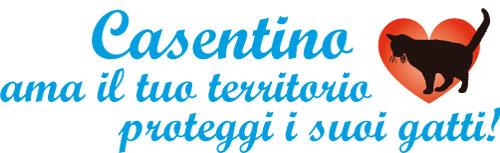 casentino_gatti