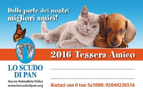 TESSERA AMICO 2016