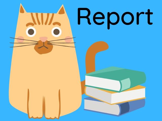 Report Marzo 2019
