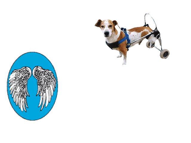 Lo Scudo di Pan ONLUS