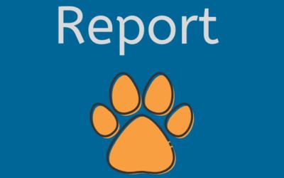 Report Ottobre 2020