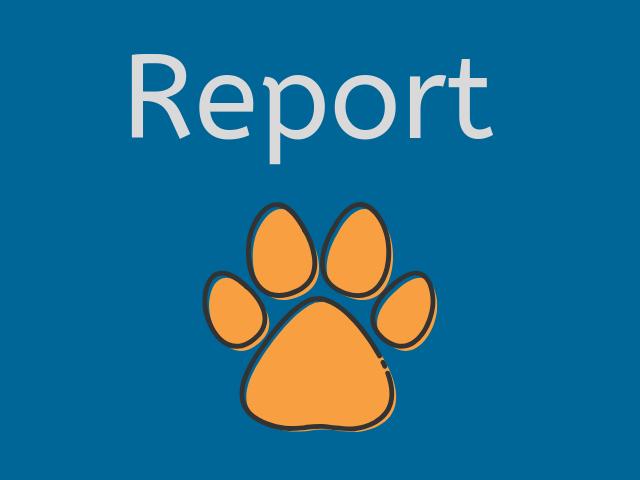 Report Dicembre 2020
